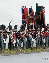 Nap British line infantry 1808-1815