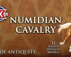 Numidian cavalry