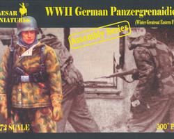 German Panzergrenadiers winter