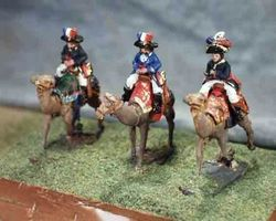 French Dromedary corps 1