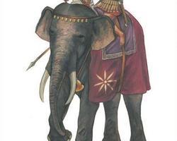 Macedonian Elephants